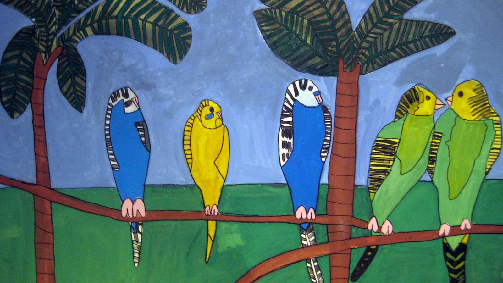 budgerigars home zion levy stewart art